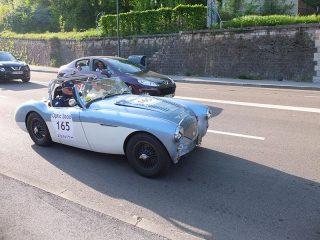 Tour Auto 2018 (Optic2000) - Austin Healey 100/4 1955
