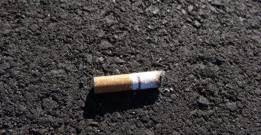 mégot de cigarette
